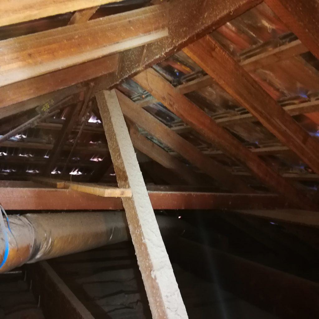 ROOF SPACE INSPECTION IS CRITICAL